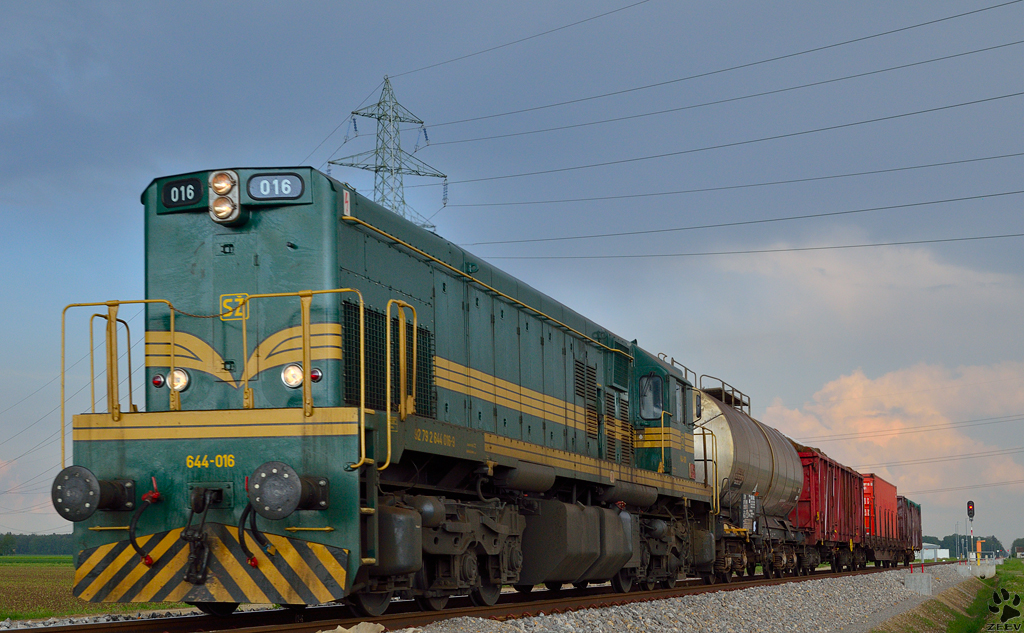 Diesel loc 644-016 is hauling freight train through Cirkovce on the way to Pragersko station. /8.5.2013