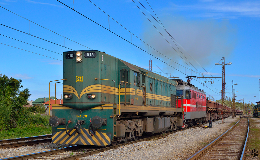 Diesel loc 644-018 and electro loc 342 are hauling freight train through Pragersko on the way to the south. /28.9.2012