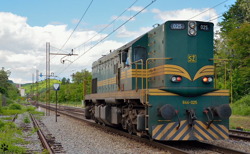 Diesel loc 644-025 is running through Maribor-Tabor on the way to Studenci station. /20.5.2013