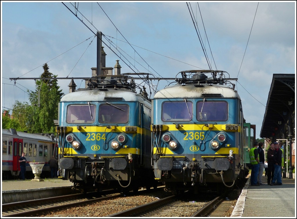 HLE 2364 and 2365 taken in Binche on June 23rd, 2012.