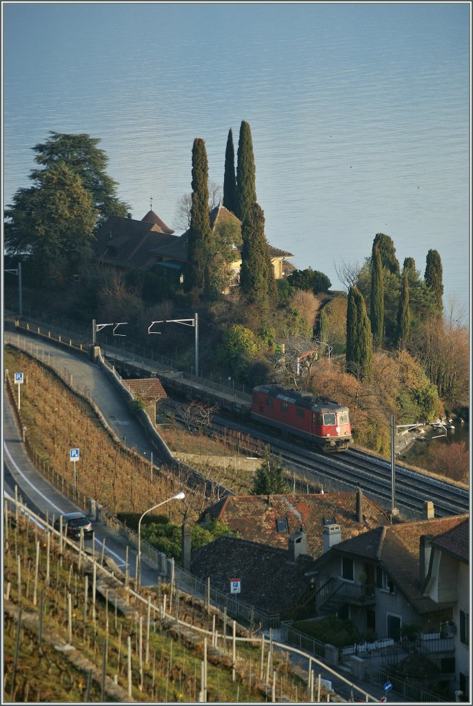 Re 4/4 II with a Cargo train between Vevey and St-Saphorin. 