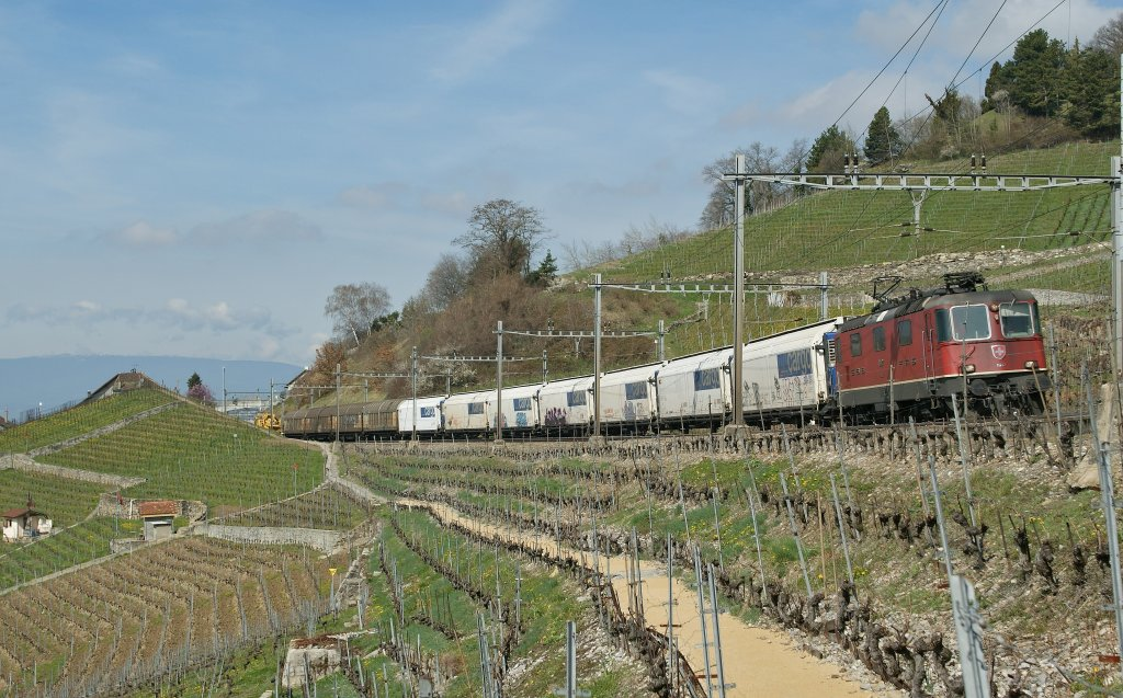 SBB Re 4/4 II 11242 with a Cargo train in the vineyards by Grandvaux.