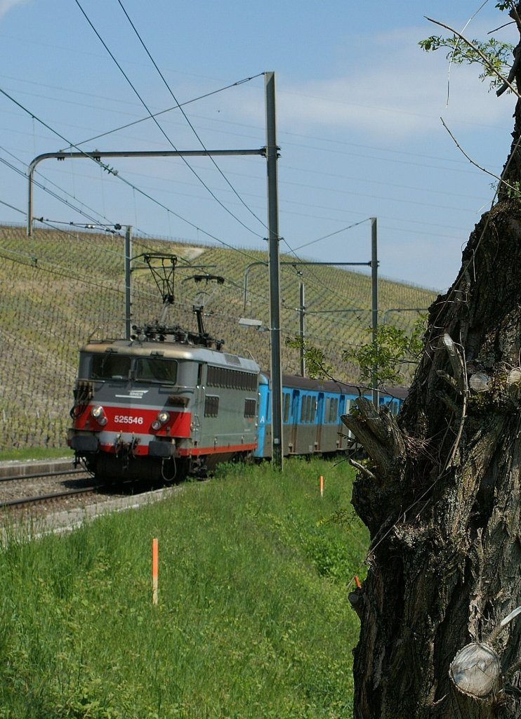 SNCF BB 25 546 with his  RIO Train in Russin. 