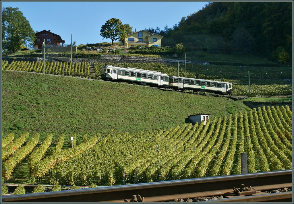 The LEB Be 4/4 wiht his Bt is engaged in an ASD Local train service here by over Aigle in the vineyards. 21.10.2010