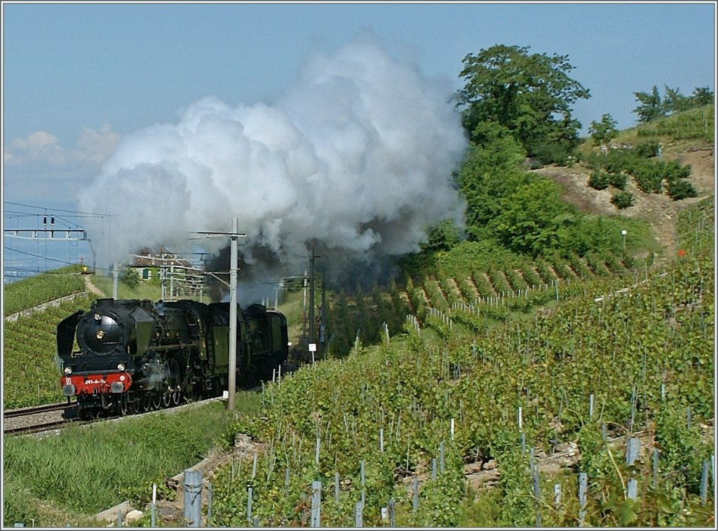 The SNCF 241-A-65 in the Vineyard between Bossière and Grandvaux. 