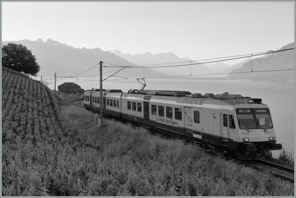 The  Train des Vignes  in Black/Whit.