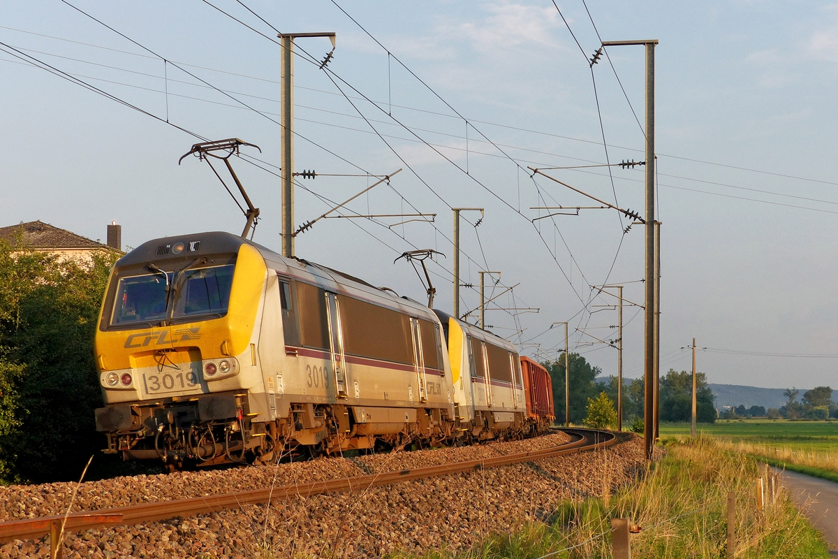 . 3019 and 3011 are heading a freight train in Berschbach/Mersch on August 1st, 2014.