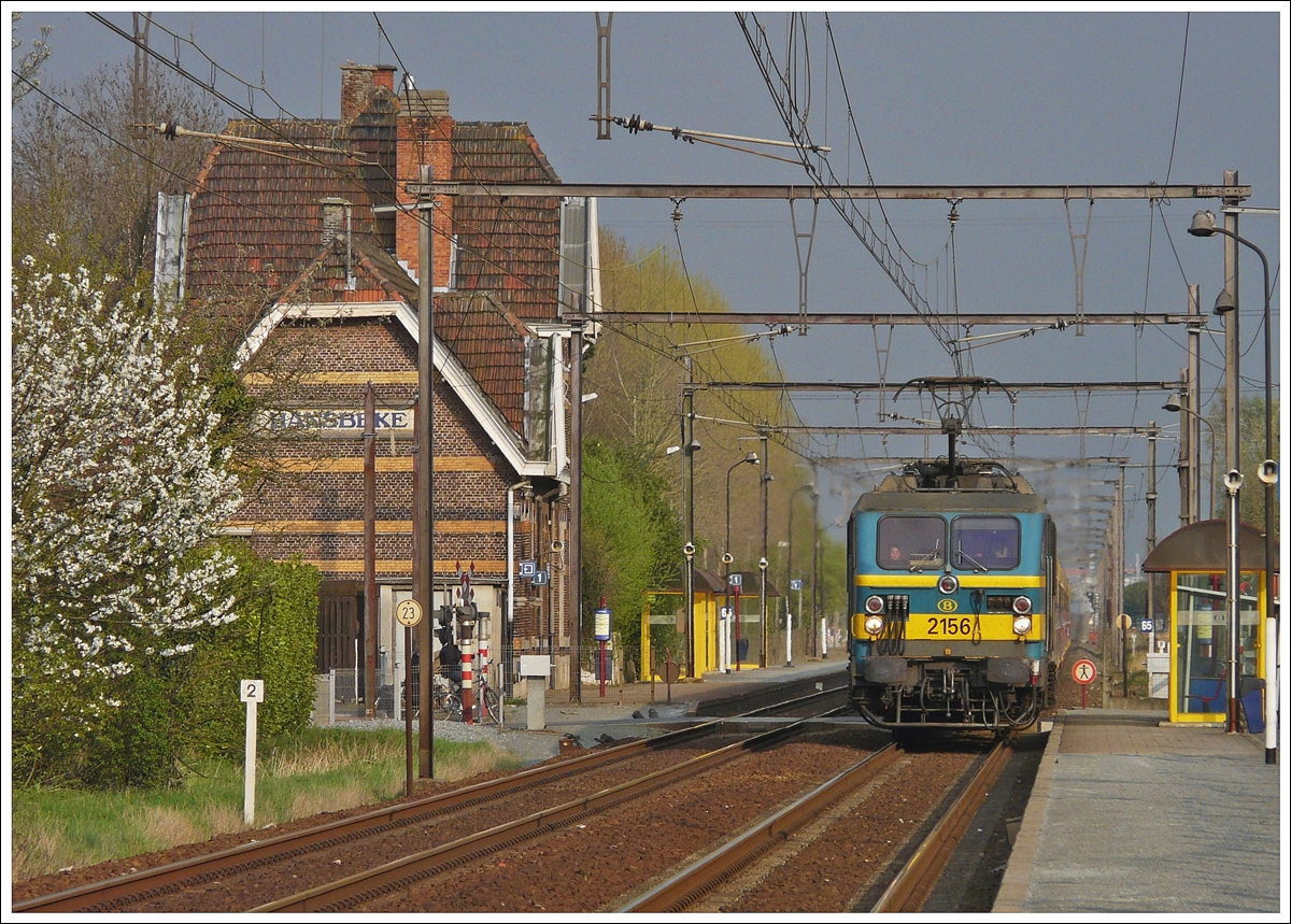 . HLE 2156 is running through the station of Hansbeke on April 10th, 2009.
