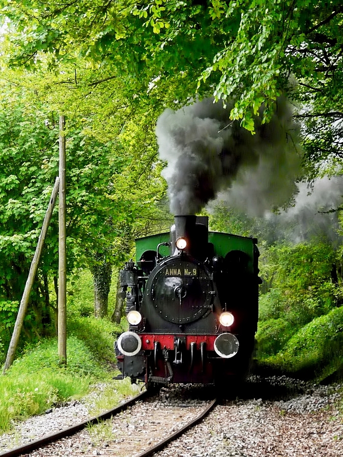 . The steam engine  Anna N° 9  is running on the heritage railway track of  Train 1900  between Pétange and Fuusbësch on May 3rd, 2009.