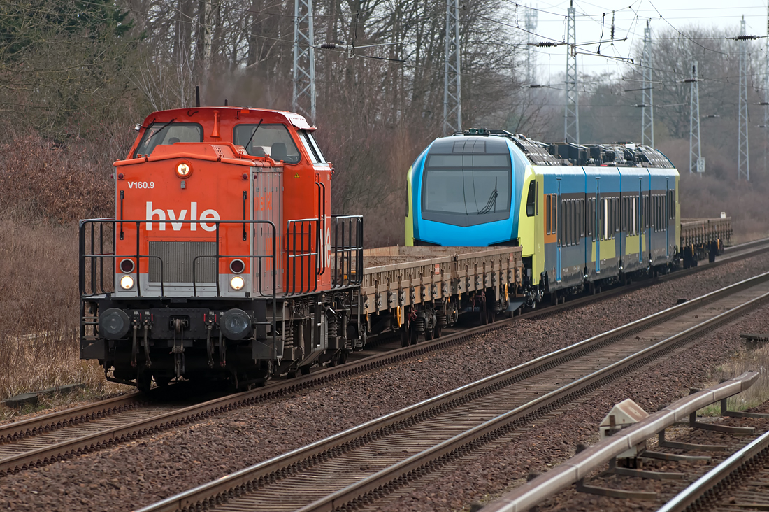 203 141-7 ( V 160.9 ) ( 92 80 1203 141-7 D-HVLE ) passing Bergfelde station in front of an unfinished Stadler Rail FLIRT multi-unit rail coach. The c/s of the FLIRT looks like it is designated to become a new member of the Westfalenbahn train fleet. V 160.9 was built in 1975 by VEB Lokomotivbau Elektrotechnische Werke -Hans Beimler-, Hennigsdorf (LEW), construction number 15076, acceptance date: 1975-06-26. It first was named 110 804-2 ( DR ), then 112 804-0 ( DR ), 202 804-1 ( DR + DB )