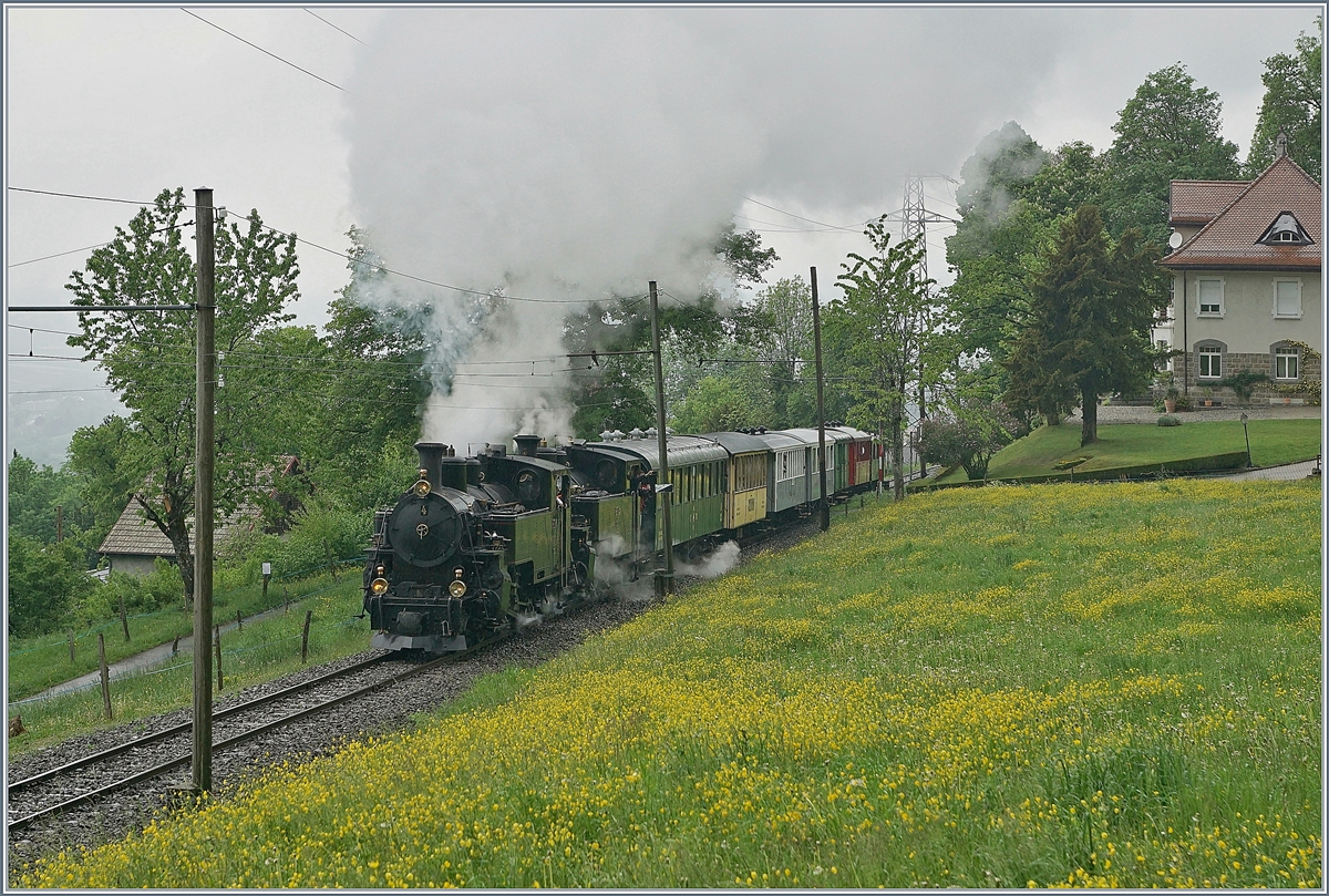 50 years Blonay-Chamby, The Mega Steam Festival 2018: The HG 3/4 N° 4 and N° 3 near Chaulin.