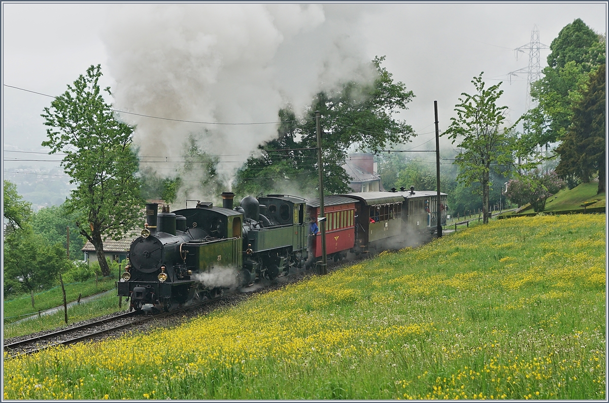 50 years Blonay-Chamby, The Mega Steam Festival 2018: The SBB G 3/4 208 and the CP 164 near Chaulin.