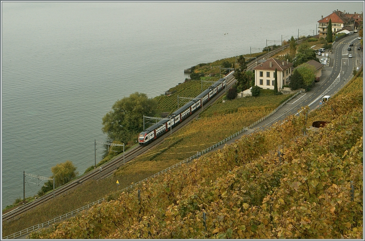 A SBB RABe 511 on the way to Geneva by Epesse VD.