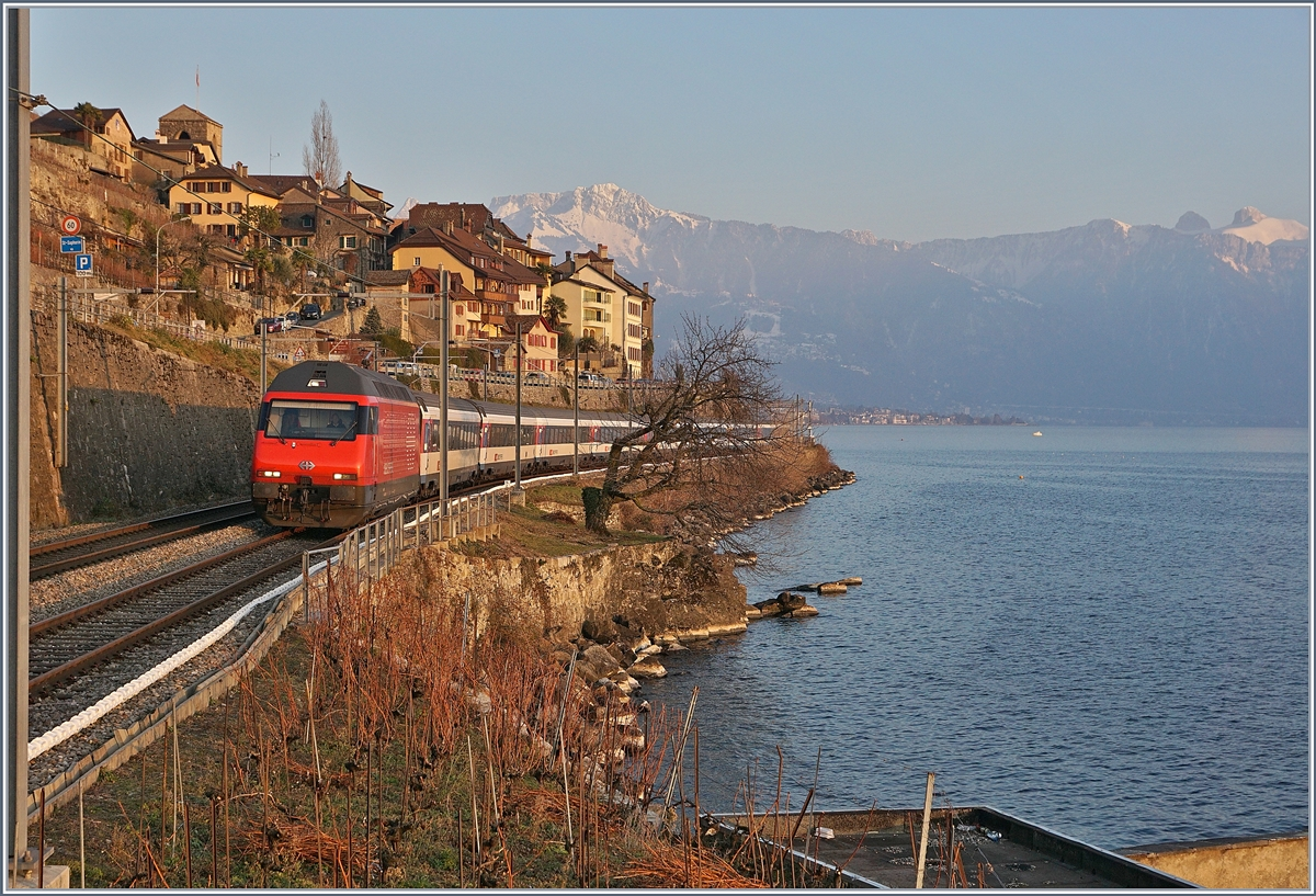 A SBB Re 460 wiht an IR to Geneva Airport by St Saphorin. 