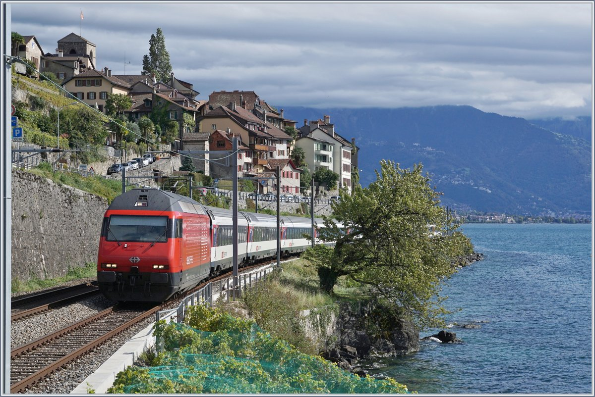 A SBB Re 460 wiht an IR90 to Geneva by St Saphorin.