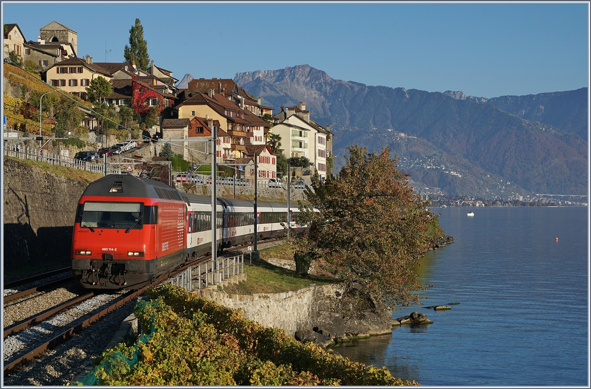 A SBB Re 460 with an IR 90 on the way to Geneve Airport by St Saphorin. 
