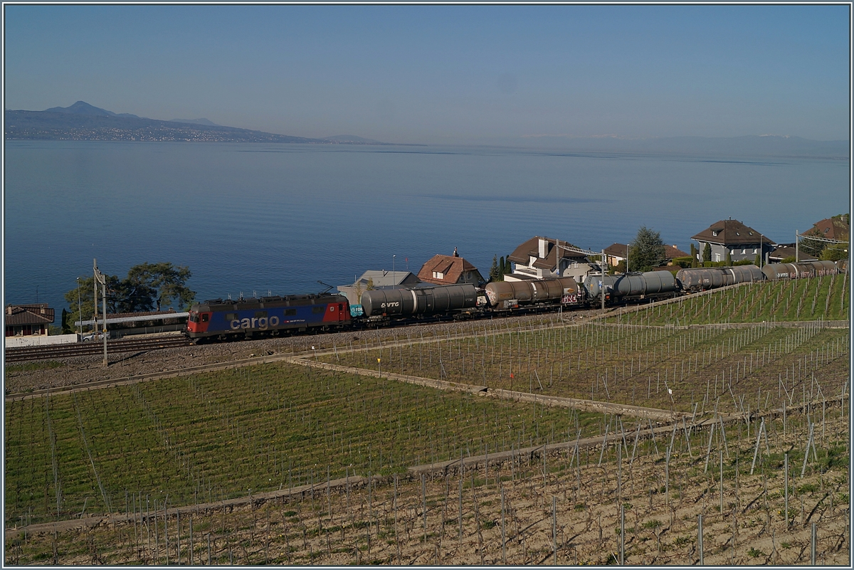 A SBB Re 6/6 with a Cargo Train near Cully on the way to St-Saphorin. 