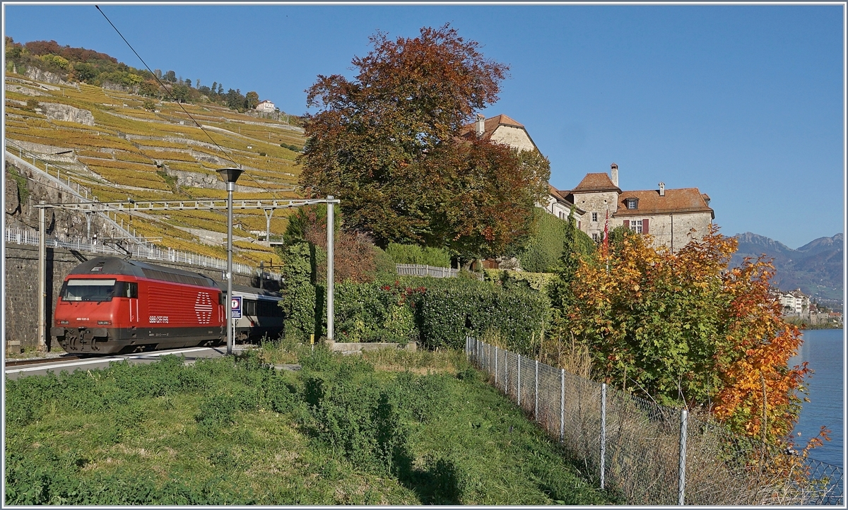 A SBB REe 460 wiht an IR to Brig in Rivaz. On the lesft site the Chastle of Glèrolles.