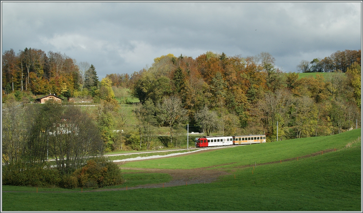 A TPF local train between Châtel St Denis and Bossennes.