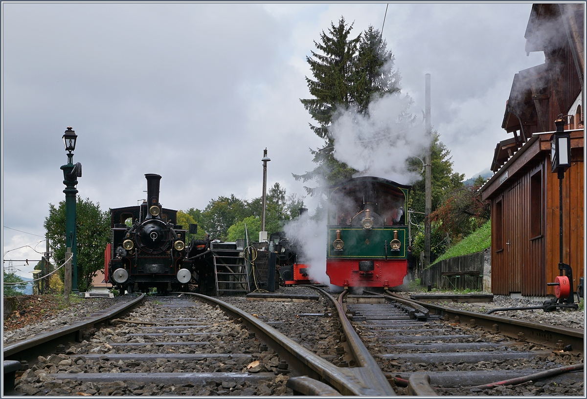 Blonay-Chamby steamers in Chaulin.