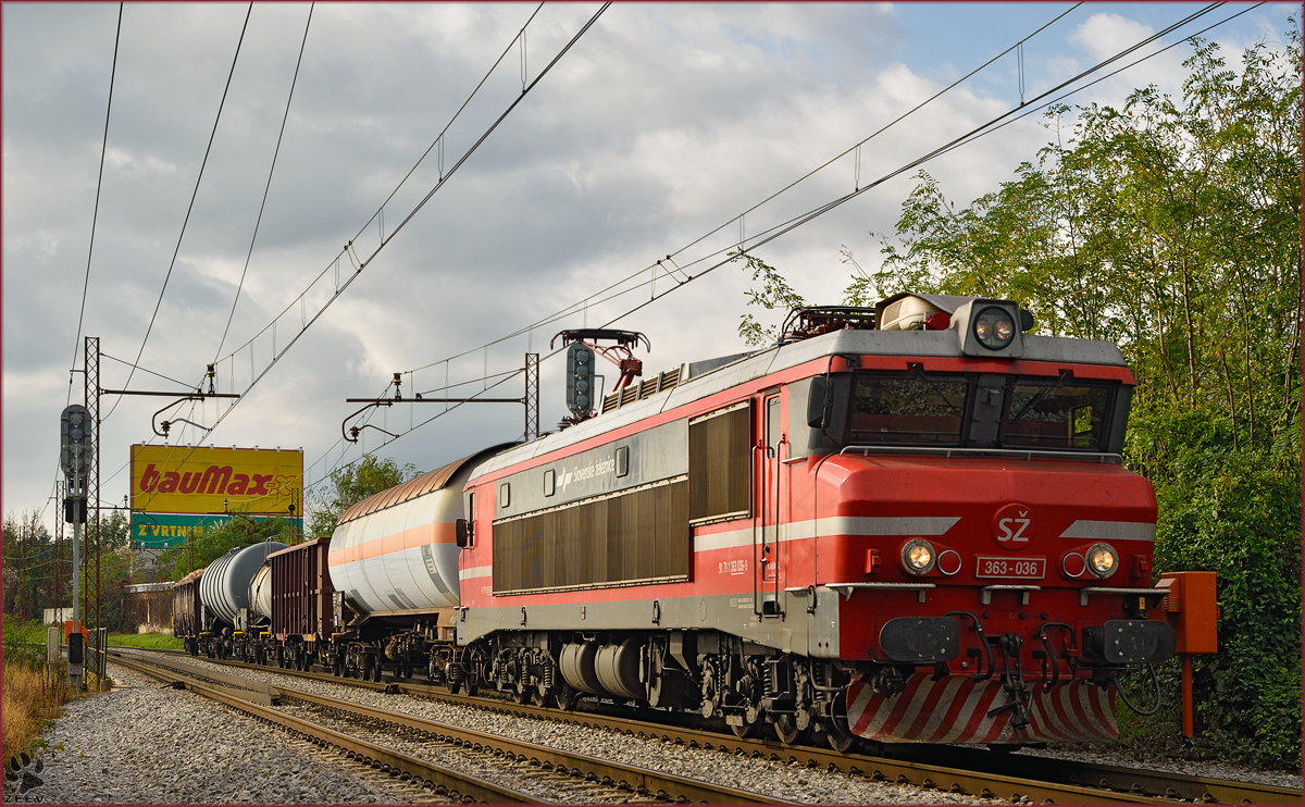 Electric loc 363-036 pull freight train through Maribor-Tabor on the way to the north. /21.10.2014