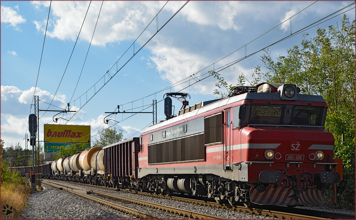 Electric loc 363-036 pull freight train through Maribor-Tabor on the way to the north. /4.11.2014