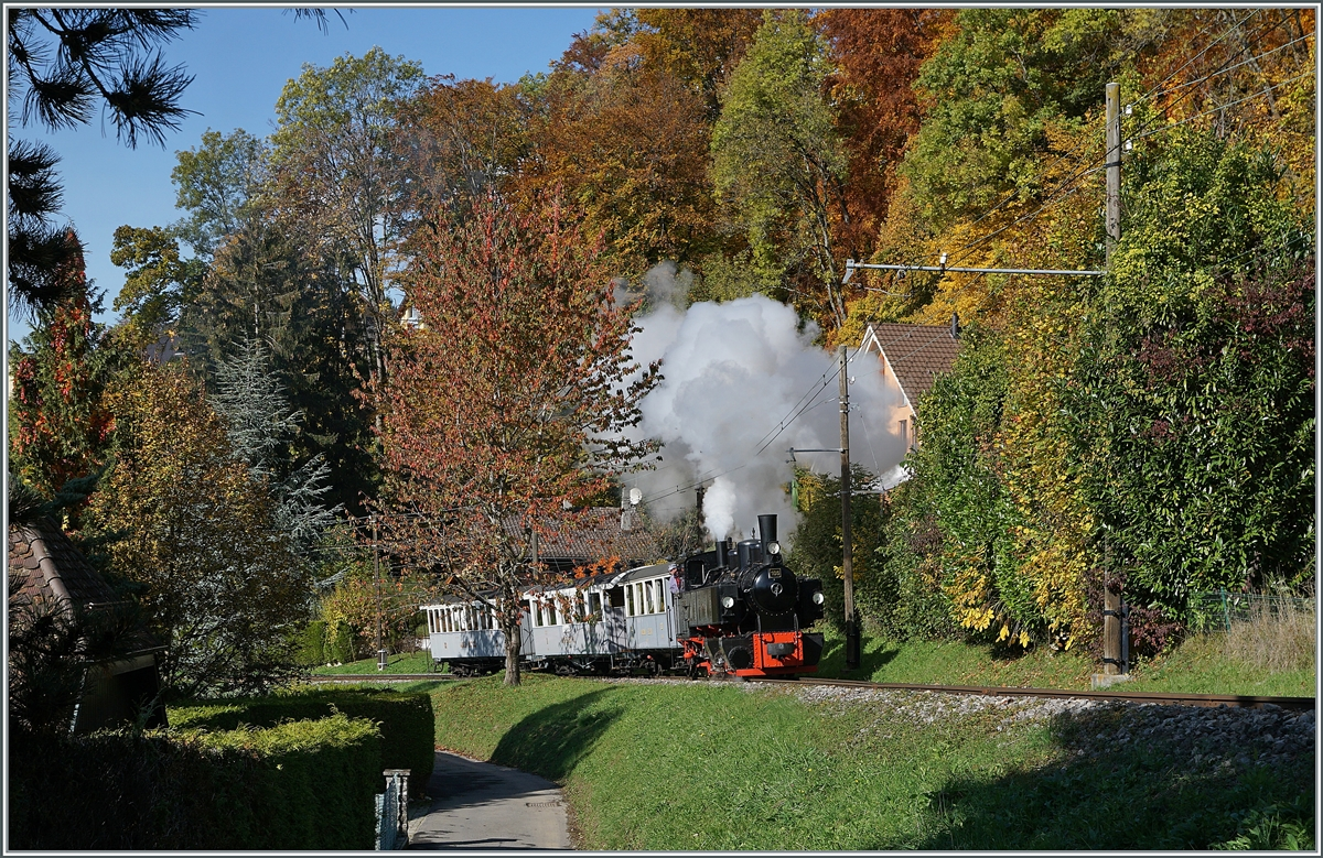 LA DER 2020 by the Blonay-Chamby: The Blonay-Chamby G 2x 2/2 105 on the way to Chaulin near Blonay. 