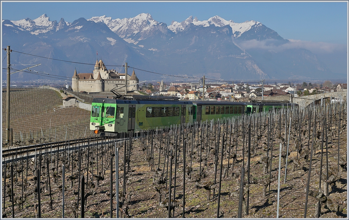 The ASD local train 429 in the vineyards over Aigle.