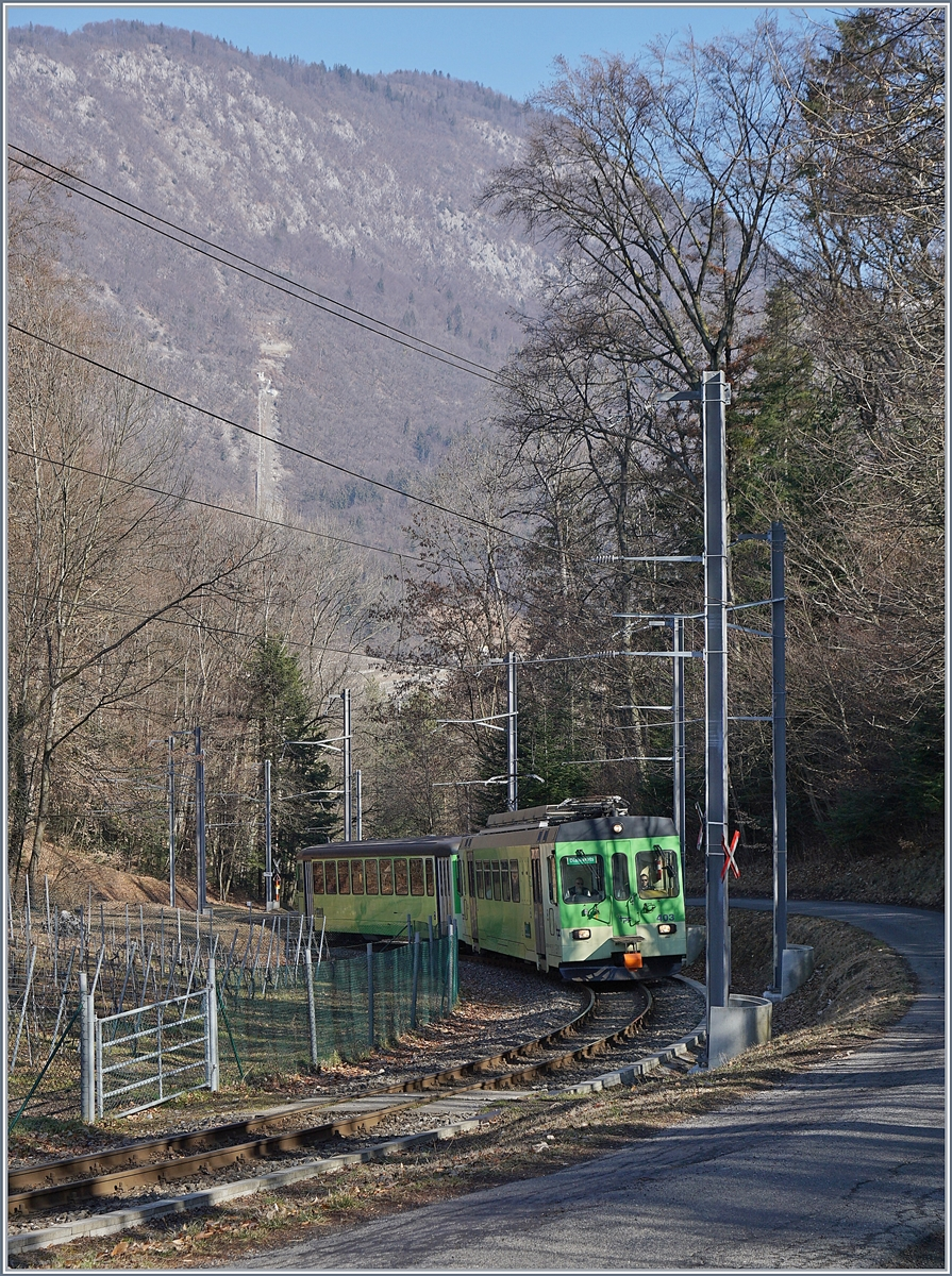 The ASD local train 432 in the Wood between Aigle and Verschiez.