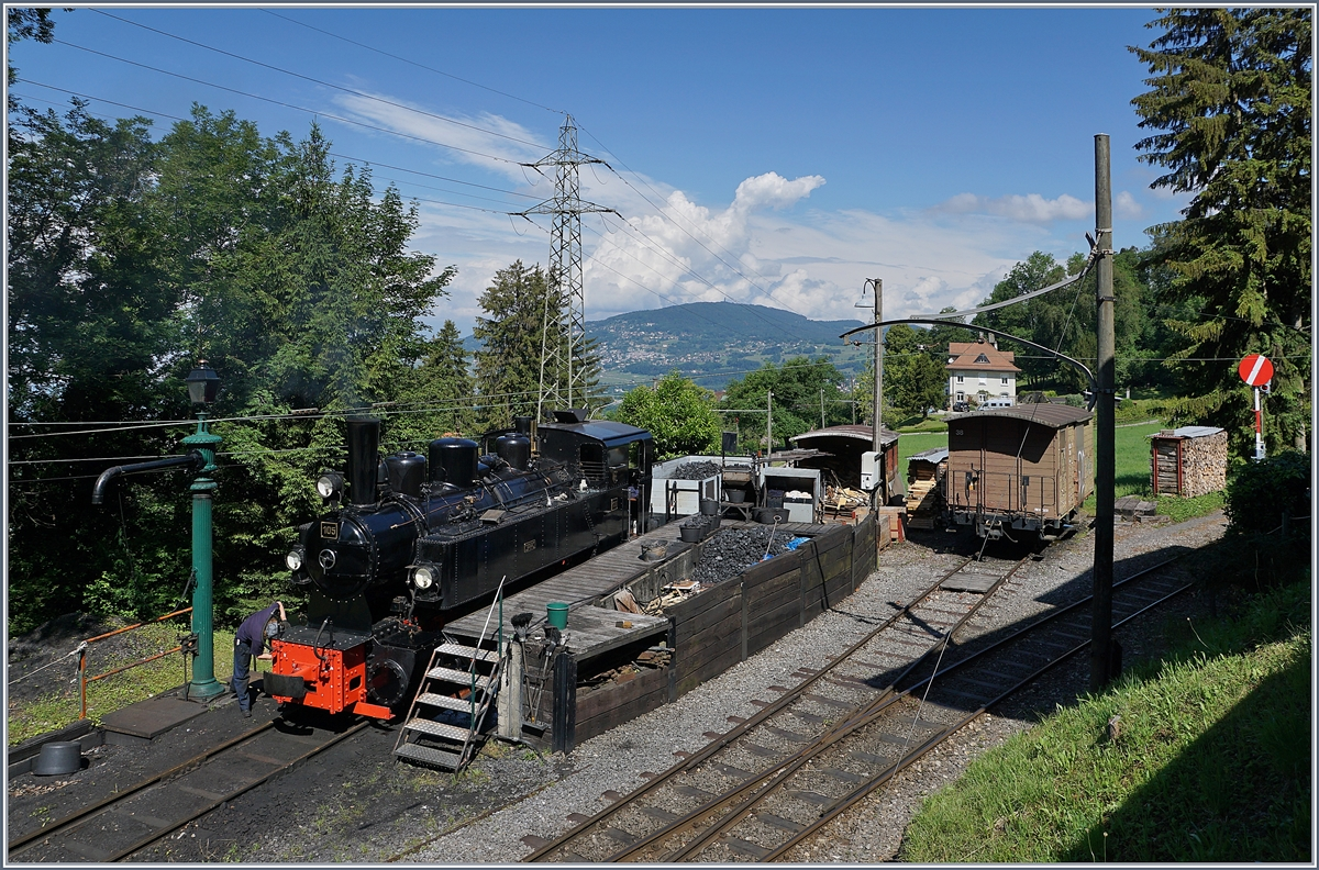 The Blonay-Chamby G 2x 2/2 105 in Chaulin. 