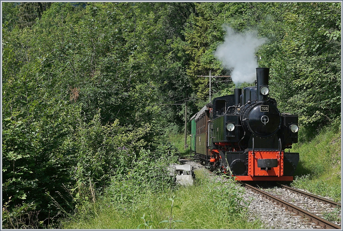 The Blonay-Chamby G 2x 2/2 105 on the way from Chamby to Chaulin.