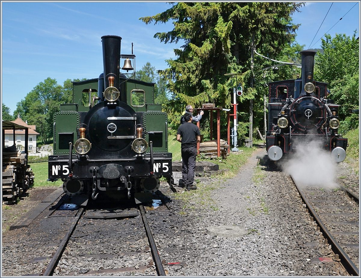 The Blonay Chamby LEB G 3/3 N° 5 and JS/BAM G 3/3 N° 6 in Chaulin.