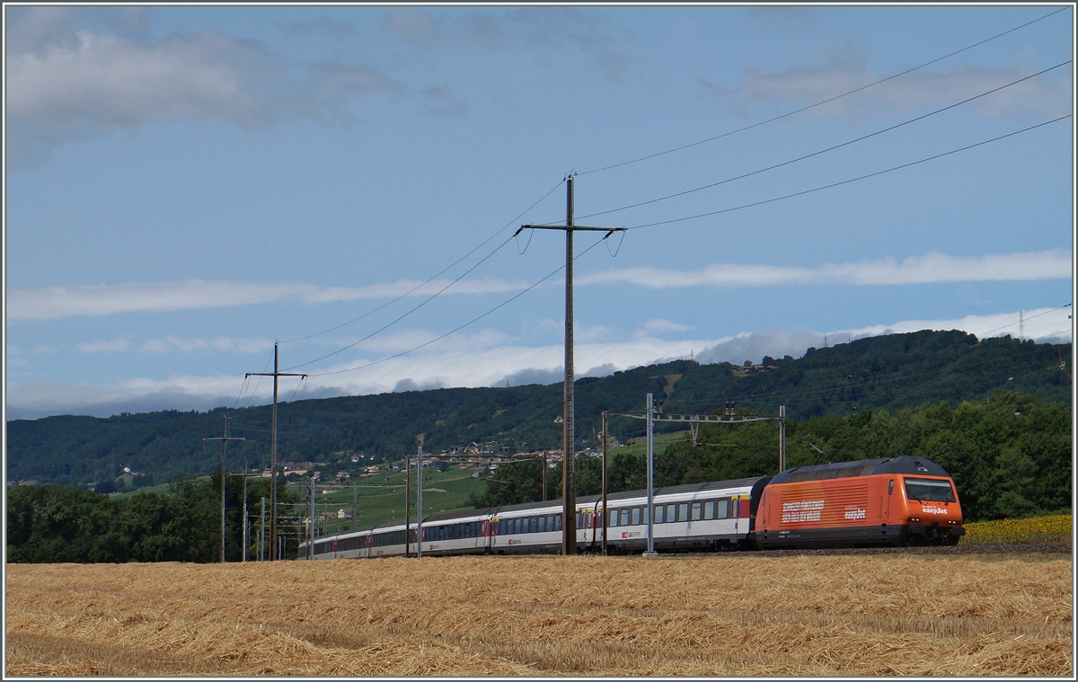 The  easy-jet  SBB Re 460 063-1 with an IR to Brig near Allaman. 08.07.2015