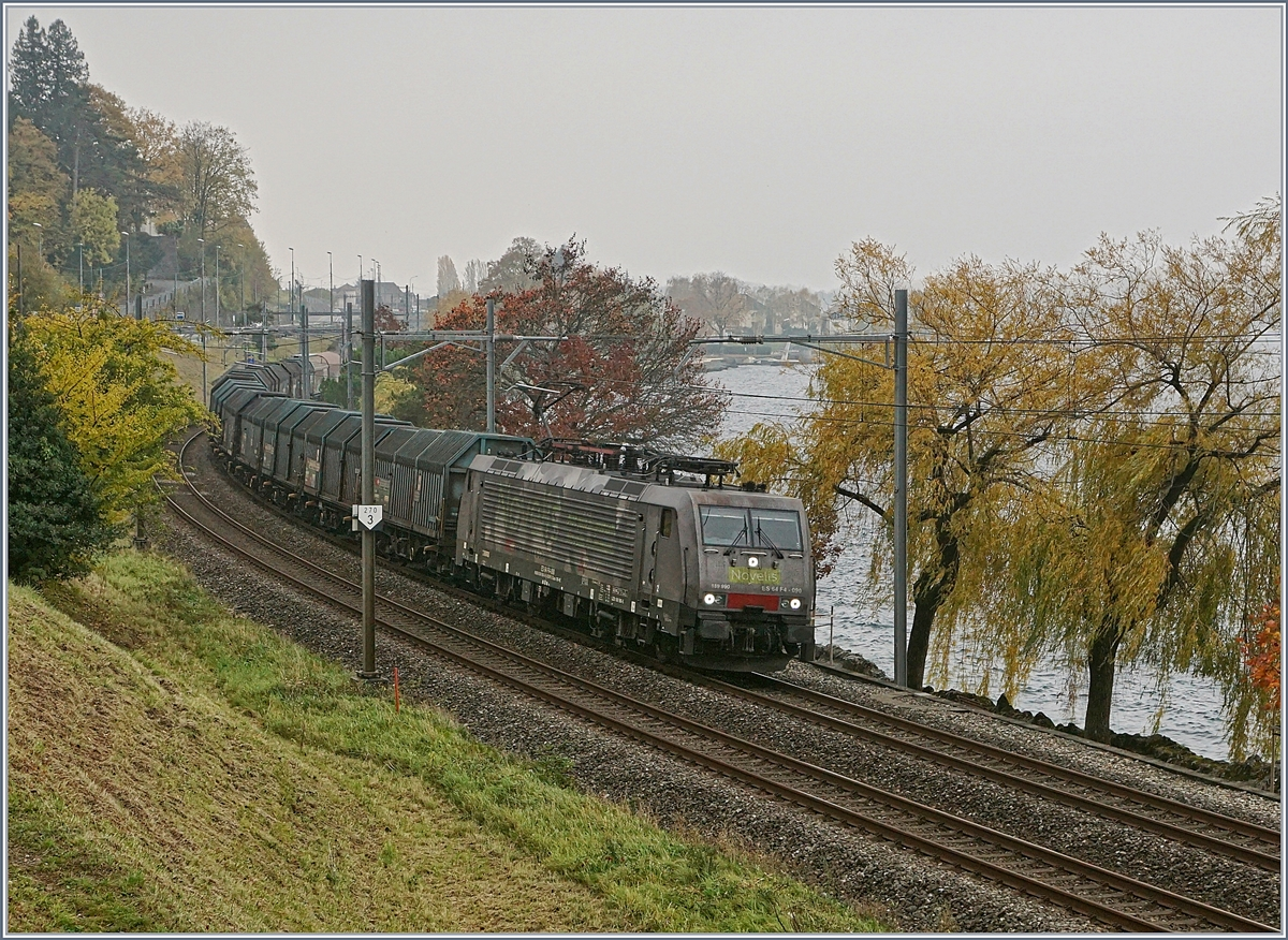 The NOVELIS 189 990 with his Cargo Trian from Sierre to Göttingen near Villeneuve.