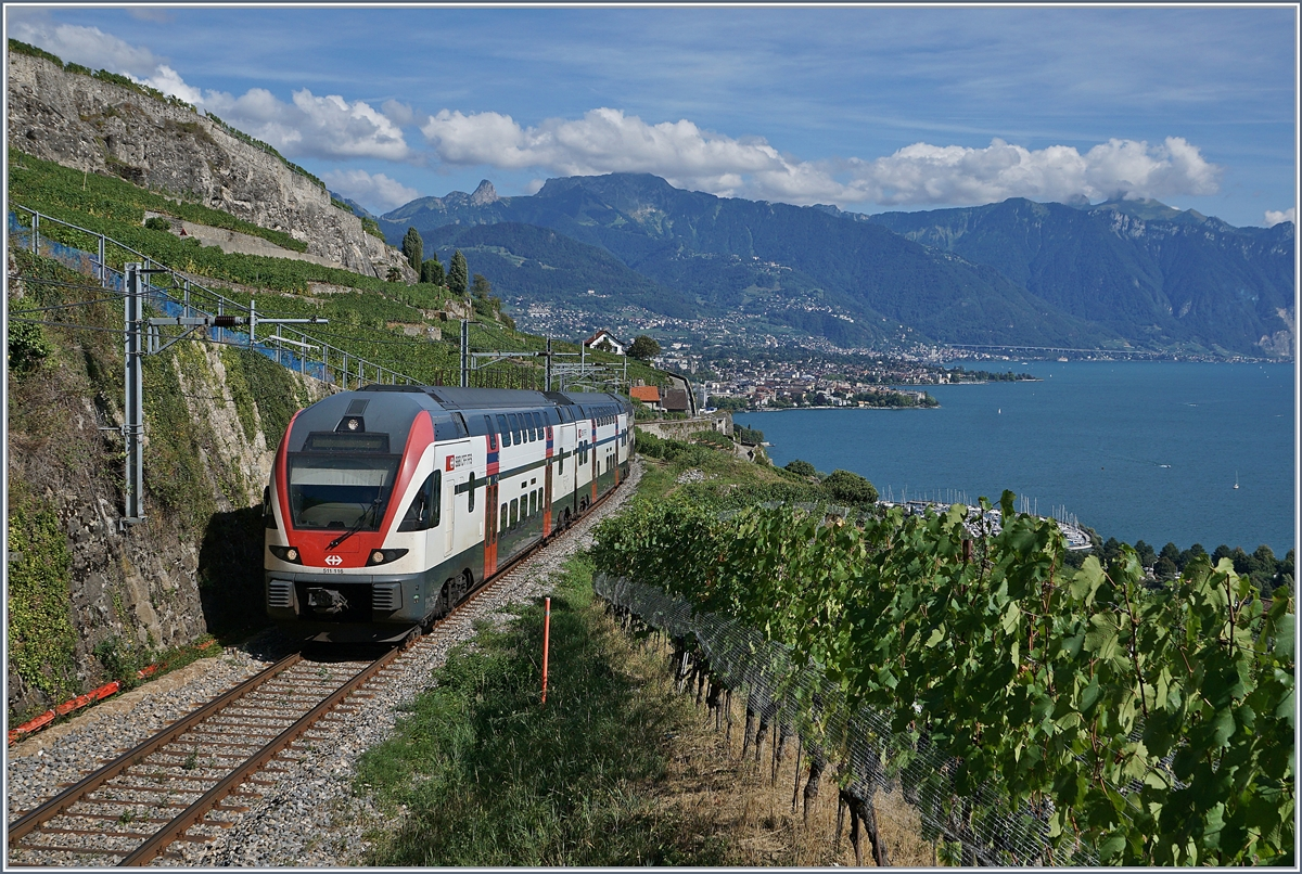 The SBB RABe 511 105 on the way to Fribourg between Vevey and  Chexbres.