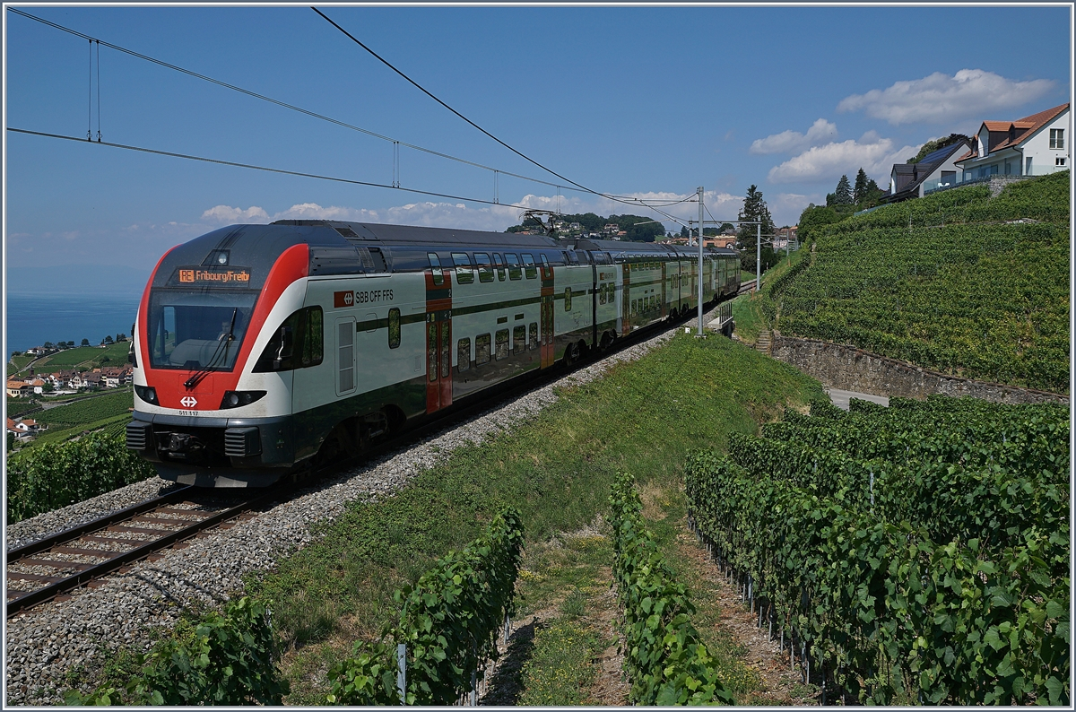 The SBB RABe 511 117 on the way to Fribourg by Chexbres.