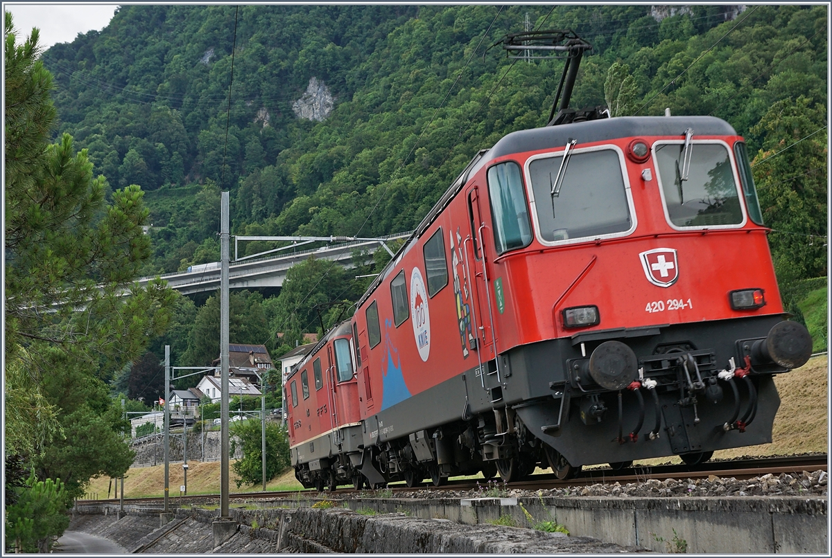 The SBB Re 420 244-6 and 294-1 by Villeneuve.