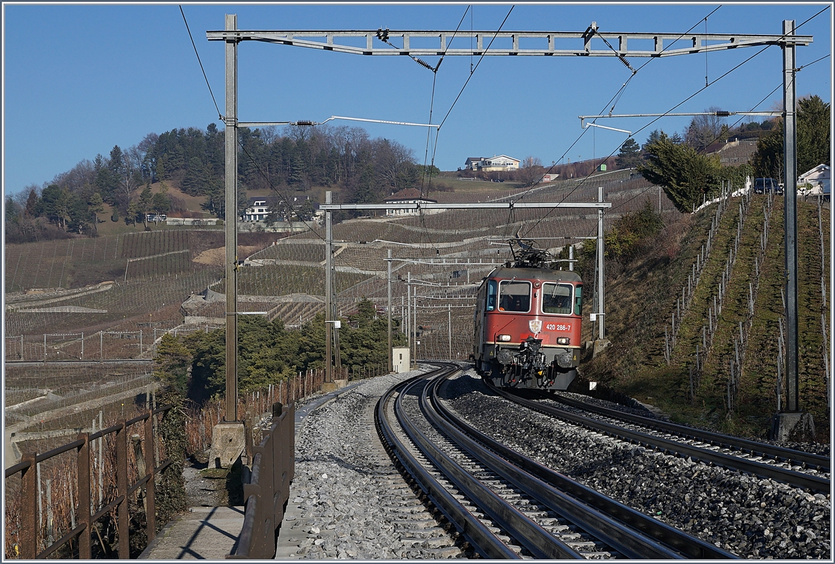 The SBB Re 4/4 II 11286 by Grandvaux. 