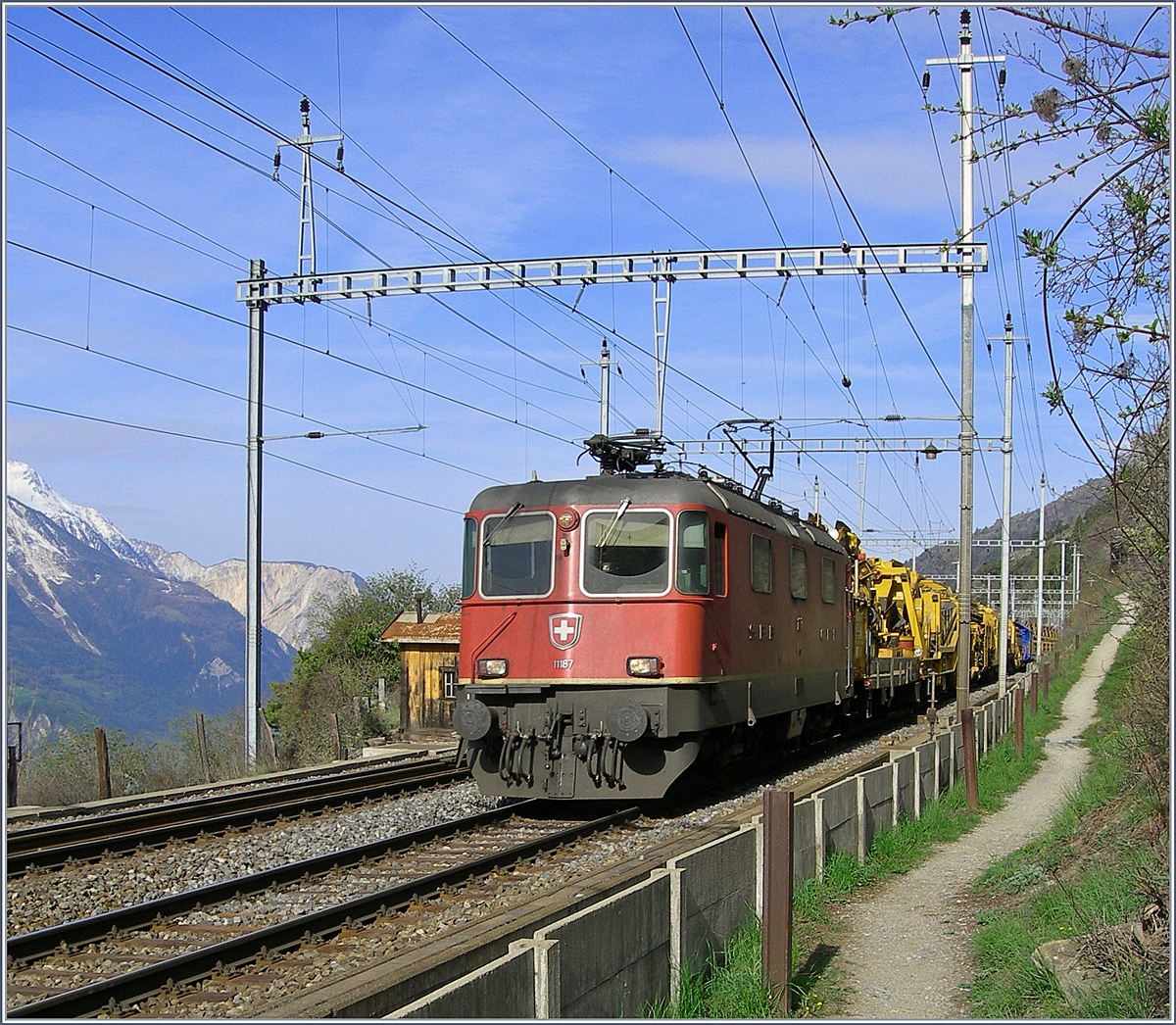 The SBB Re 4/4 II 11187 by Hohtenn.