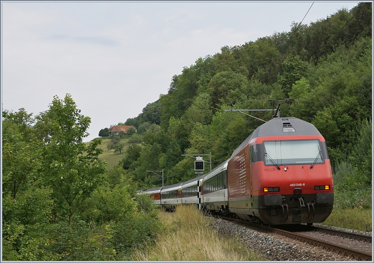 The SBB Re 460 046-6 with an IC to Basel between Läufelfingen and Buckten on the  Alte Hauenstein Line .