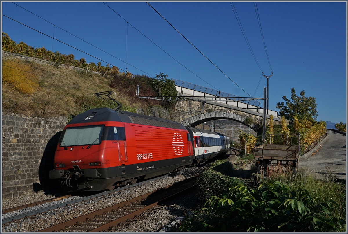 The SBB Re 460 061-3 with an IR to Brig by Cully.
