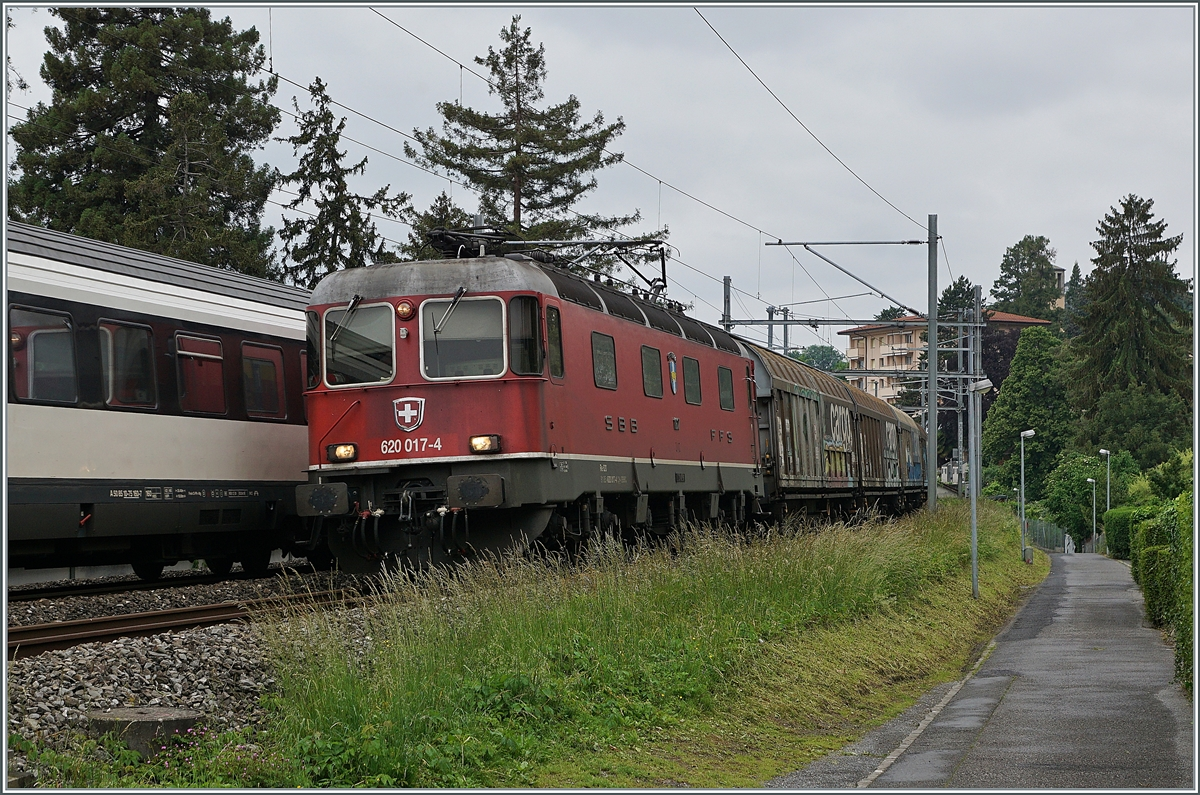 The SBB Re 6/6 11617 (Re 620 017-4)  Heerbrugg  with a Cargo Train between Clarnes and Montreux. 