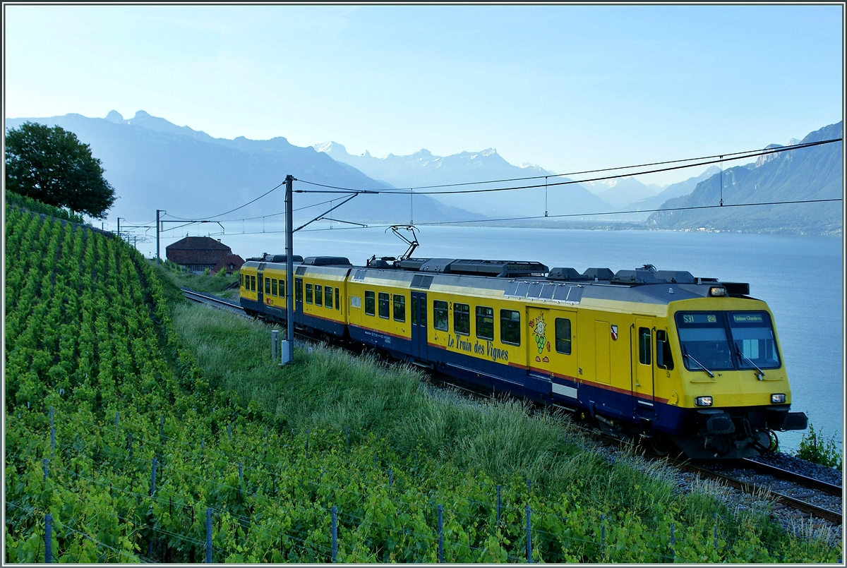 The Train des Vignes / Vineyard train by Chexbres early in the morning of the 29.05.2011.