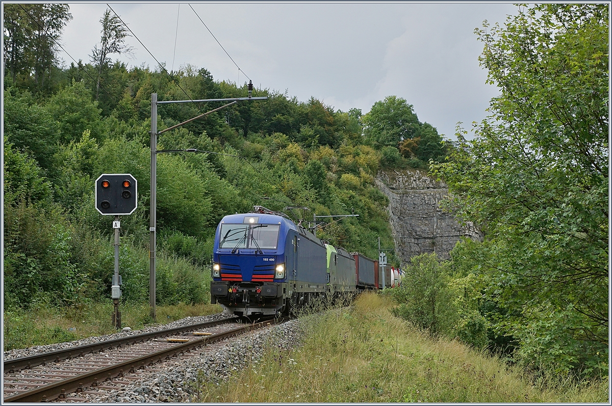 The  Vectron  193 490 and an other one between Läufelfingen and Buckten (Alte Hauenstein Line)