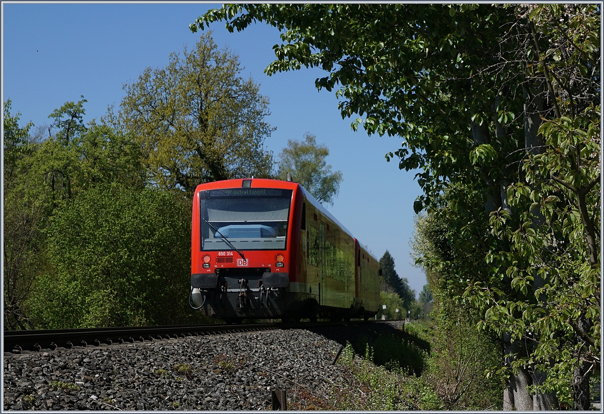 Two DB VT 650 on the way to Radolfzell by Nussdorf.