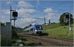 The SNCF Z 82704 from Chambèry to Geneva (TER 96608) by Russin.