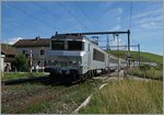 The SNCF BB 22 362 wiht the TER 96558 to Lyon in Russin.