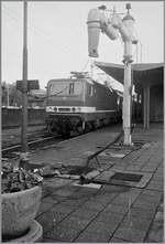 The DR 243 603-8 wiht a fast train service (D-Zug) to Leipzig in Schwein.