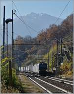Two 193 run for SBB Cargo International on the way to Brig by his passage in Preglia.