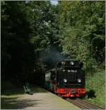 The Rübb 99 1784-0 is coming from the dark wood to Sellin West.